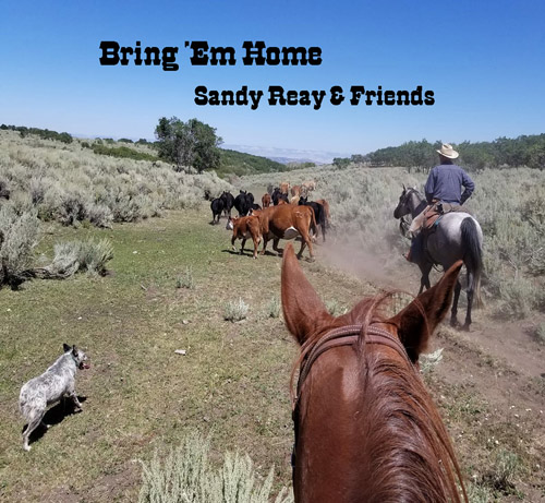 Bring Em Home CD by Sandy Reay and Friends